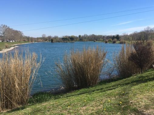 Lake: St Jean pla de corts