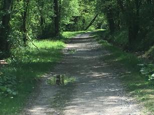 Path along river Loue